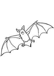 Fledermaus malen - Google-Suche