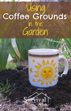 """I've been using coffee grounds in the garden. It helps feed the plants and it's one less thing that goes down the drain or into the trash can. If you're not already using coffee grounds in the garden, you might think twice after reading this article!"""