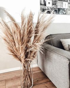 traditional home decor Pampas People on - Apartment Therapy, Grand Vase Transparent, Decoration Entree, Outdoor Venues, Pampas Grass, Cool Apartments, Apartments Decorating, Decorating Bedrooms, Design Moderne