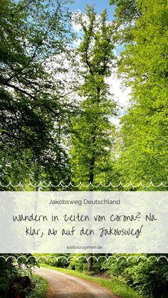 Jakobswege gibt es in Deutschland einige nur die wenigsten wissen davon. Warum sich das Abenteuer Jakobsweg definitiv lohnt, das verrate ich Dir! Europe Travel Guide, Travel Agency, Beautiful Islands, Vacation Destinations, Places To Go, Outdoor, Explore, World, Nature