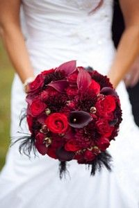 A red bridal bouquet looks stunning against a white dress. Red roses, deep red calla lily with accent black feathers for extra glamour. Flower ideas www.myweddingflowerideas.co.uk