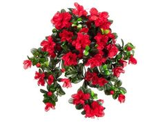 29' Water-Resistant Azalea Hanging Bush x10 RED (Pack of 6) * Click on the image for additional details.