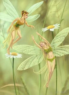 Elves Faeries Gnomes: Flower by Colin Howard. Fairy Dust, Fairy Land, Fairy Tales, Elfen Fantasy, Fantasy Art, Fantasy Fairies, Magical Creatures, Fantasy Creatures, Elves And Fairies