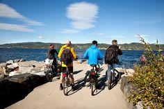 Fiordo de Oslo: En bicicleta a tu aire - Camino En Bici Fiordo De Oslo, Motorcycle, Vehicles, Forests, Drive Way, Bicycles, Scenery, Pictures, Motorcycles