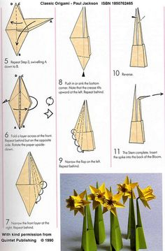 Paper comes to Life: Daffodil (Ted Norminton)