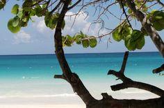 Carlos Rosario beach, Culebra