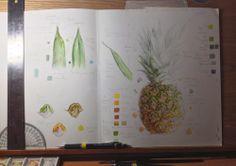 pineapple-desk-study.jpg (1000×707)