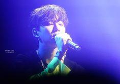 Junho Lee Junho, Concert, Fictional Characters, Concerts, Fantasy Characters