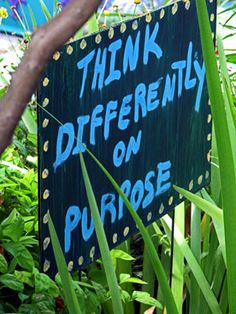 Slow Gardening A philosophical approach to gardening seeks joy in everyday tasks and shared successes.