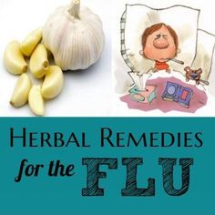 Know the different herbal remedies for the FLU that you can do at home!