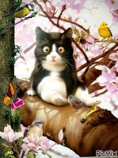 Multi-Wear Wrap - Cats & Flowers by VIDA VIDA yA86D19L2