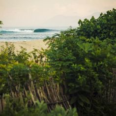 That perfect wave could be just around the corner...#livethesearch - always