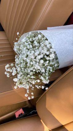 No Rain, Flower Aesthetic, Flowers Nature, My Flower, Aesthetic Wallpapers, Planting Flowers, Beautiful Flowers, White Flowers, Flower Arrangements
