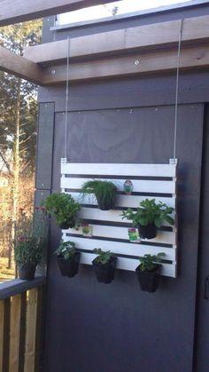 Suspended Pallet vertical garden for your balcony