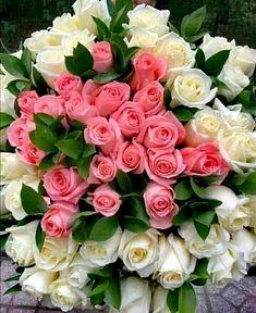 Rosen Arrangements, Rose Flower Arrangements, Beautiful Flowers Garden, Beautiful Roses, Pretty Flowers, Birthday Wishes Flowers, Happy Birthday Flower, Flower Box Gift, Red Rose Bouquet