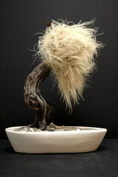 ~ Impressive Bonsai ***** ~ Krislyn design. Looks like something Dr. Seuss would approve of! ~