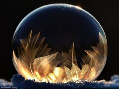 Photographer creates delicate ice crystals on the outside of bubbles Ms Fritz has seen the bubbles in her creations compared to tiny snow globes after learning how to form ice bubbles Ice Bubble, Bubble Art, Frozen Bubbles, Soap Bubbles, Bubble Pictures, Art Pictures, Artistic Photography, Macro Photography, Snowflake Photography