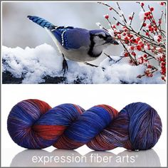 JAY Limited Edition 'RESILIENT' SOCK YARN by expression fiber arts