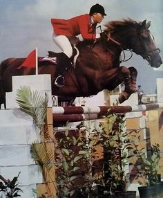 Melanie Smith on Val de Loire, owned by Still Meadow Farm, at the Pan Am Games in 1979, where the USET won the Team Gold. In 1978, Melanie earned the American Grand Prix Association's Lady Rider of the Year title as well as the AGA's overall Rider of the Year. Her wonderful record that year convinced the AGA that women could perform on completely even terms with men, leading to a decision to discontinue the separate Lady Rider award. To cap off the year, Val de Loire was named AGA Horse of…