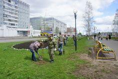 Как в Эжвинском районе города Сыктывкар мутят деньги. Или новый фейковый эко-флешмоб.