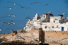 View from fishing village of #Essaouira #Morocco