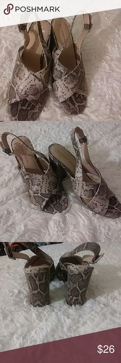 WHO WHAT WEAR Snake print textile upper nwot who what wear Shoes Heels