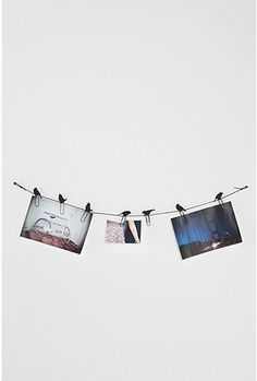 UrbanOutfitters.com > Birds on a Wire Photo Clip - Set of 8... Could easily be made DIY