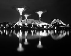 Gardens by the Bay Singapore black and white photography by ImagesByTiffyMoon Gardens By The Bay, Night Photography, Black And White Photography, Modern Architecture, Futuristic, Singapore, Asia, Lights, Park