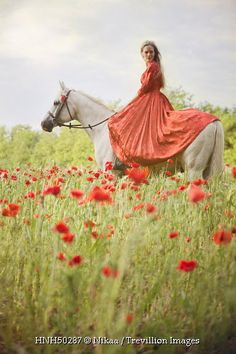Trevillion Images - woman-on-horse-in-poppy-field