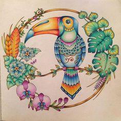 #toucan #magicaljungle #enchantedforest #lostocean #secretgarden #johannabasford #prismacolor #fabercastell #mycreativeescape #coloringbookforadults #coloringbook