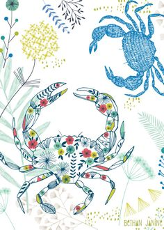 sea life - sea life photography - sea life underwater - sea life artwork - sea life watercolor sea l Crab Illustration, Pattern Illustration, Graphic Illustration, Beach Phone Wallpaper, Hd Wallpaper, Wallpapers, Illustrations Vintage, Underwater Art, Kids Prints