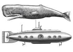 Steven Noble Illustrations: Sperm Whale vs Submarine Submarine Craft, Submarine Movie, Yellow Submarine, Midget Submarine, Submarine Drawing, Whale Drawing, Russian Submarine, Whale Decor, Whale Tattoos