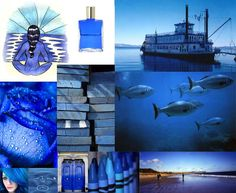 Julie Howlin Aura Soma Inspiration equilibrium bottle #2 Blue, Peace bottle