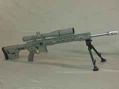 Shotguns, Firearms, 50 Beowulf, Indoor Shooting Range, Custom Ar, Ar 15 Builds, Survival Items, Hunting Guns, Manish