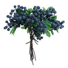 Blueberries Kitchen Decor Yahoo Image Search Results