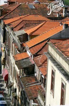 Il rumore dell'oceano, la vita semplice e genuina della popolazione portoghese, i colori brillanti delle azulejos, il verde dei vitigni lungo le sponde del fiume Douro, i piatti di bacalhau à brás accompagnati da un bicchiere di Vinho do Porto: per chi è alla ricerca di un'Europa inconsueta, visitare un pezzo di Portogallo sarà senz'altro un'esperienza che lascerà un segno indelebile.  http://www.jonas.it/portogallo_in_bicicletta_892.html