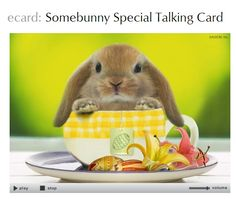 Send the cutest #Easter eCards to family and friends!  American Greetings ecards. (sponsored)