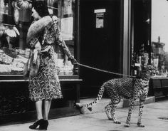 American silent film actress Phyllis Gordon (1889 - 1964) window-shopping in Earls Court, London with her four-year-old cheetah who was flown to Britain from Kenya.
