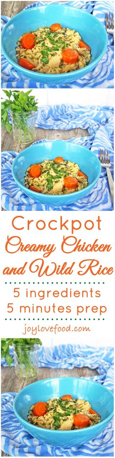 Crock Pot Creamy Chicken and Wild Rice - five ingredients and five minutes of prep is all you need, the slow cooker does the rest, to make this delicious, creamy, chicken dish that is sure to become a family favorite.