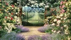 Image detail for -An English Country Garden