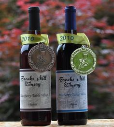 A family owned and operated winery located near Smith Mountain Lake in Franklin County Virginia. We offer delicious award winning fruit wines for all personal tastes.