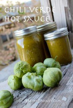 Chili Verde Hot Sauce | DIY Green Easy Hot Sauce Recipe by DIY Ready at http://diyready.com/top-14-hot-sauce-recipes/
