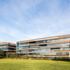 5 Murray Rose Avenue | TURNER Studio, Workplace, Multi Story Building, Architecture, Rose, Projects, Design, Arquitetura, Log Projects