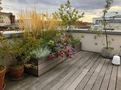 Hochbeet auf sonniger Dachterrasse Rooftop Terrace Design, Terrace Garden, Garden Planters, Roof Balcony, Rooftop Bars Nyc, Pergola, Patio Plans, Balkon Design, Garden Design
