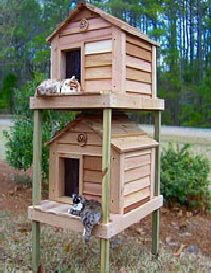 Cat House Plans Outdoor Diy Tree Heated