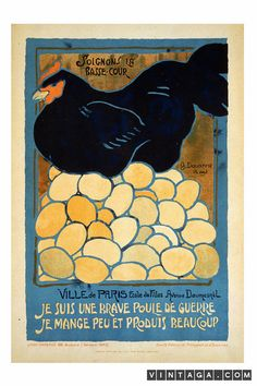 Let's take care of the poultry.