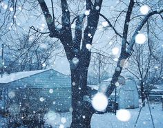Winter Christmas Photograph Shabby Chic by HConwayPhotography, $30.00