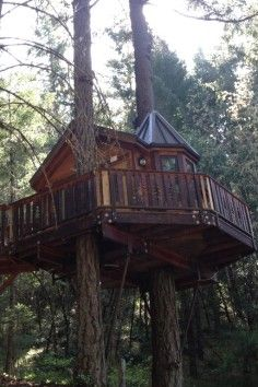 Vertical Horizons - Treehouse Paradiseis located in Southern Oregon, near the Redwood Forest, the Oregon Caves, the beautiful Coastline, and many other notable locals. Our guests stay in State of the Art Treehouses! Each with it's own unique theme. We are setting the standards for tree house excellence available for public use. The breakfasts are prepared by your host Phil, a gourmet cook. These are not to be missed! Each morning your breakfast is prepared using fresh organic fruit a...