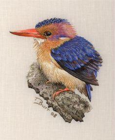 Little Pygmy Kingfisher :: Fantastic embroidery artwork by Trish Burr. Long and short stitch, french knots.