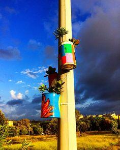 https://flic.kr/p/zg22tq | Pots in a park in Roma! #upsticksandgo #roma #park #parkart #potplants #colour#michfrost #travel #travelingtheworld #instagood #instaphoto #instaitalia #italia